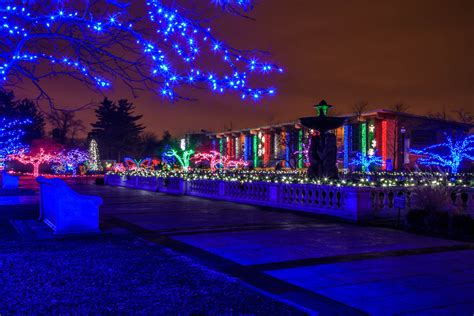Led Boom Blauw Led Boom Detroit Zoo Winter Lights
