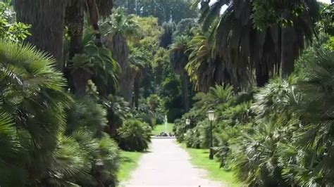 giardini botanici roma orto botanico roma