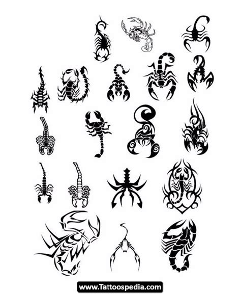pretty scorpion tattoo designs pretty scorpion tattoos 08 jpg