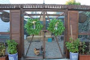 Stupefying chicken wire fence for garden decorating ideas images in