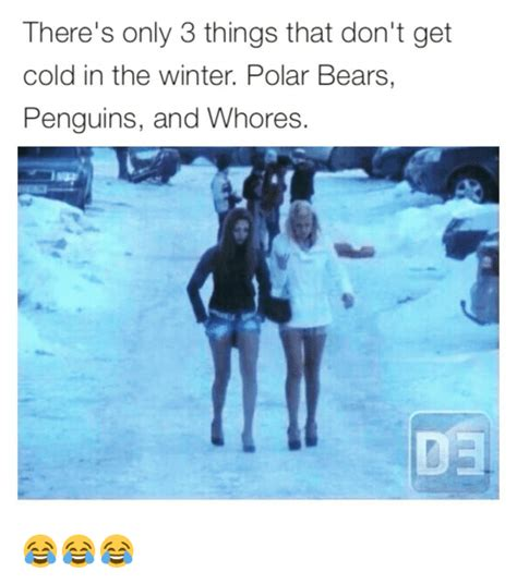 Things That Dont Get About by There S Only 3 Things That Don T Get Cold In The Winter