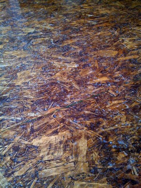 decke osb osb sheets as flooring sanded stained and polyurethaned