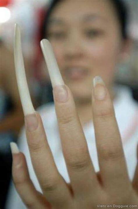 imagenes de uñas sucias y largas gente con u 241 as muy largas dogguie