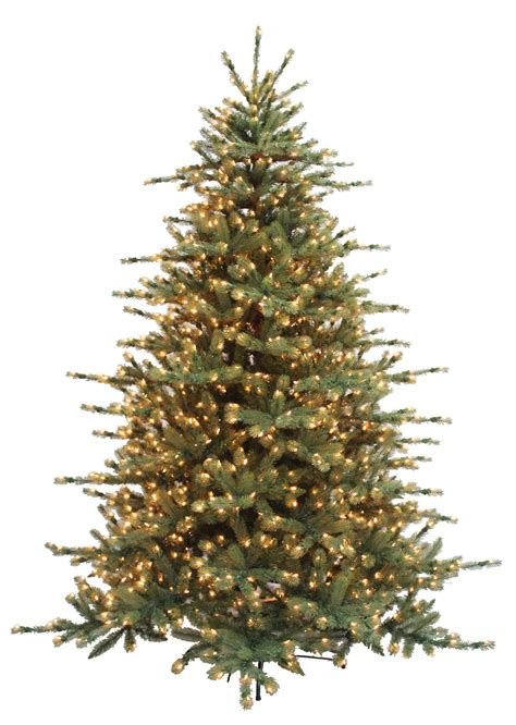grand spruce neuman tree m c twinklin s christmas