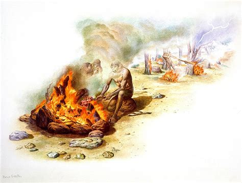 Southern Home Decor Blogs homo erectus using fire photograph by publiphoto