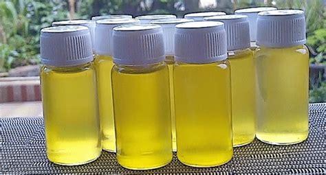Minyak Bulus Sari fakta dan efek sing minyak bulus