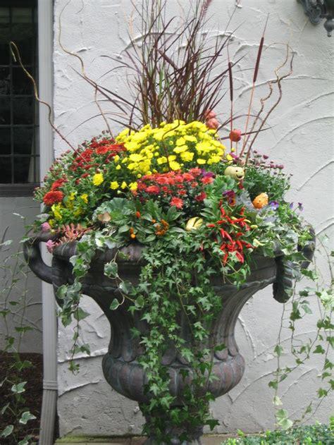 garden mums    word