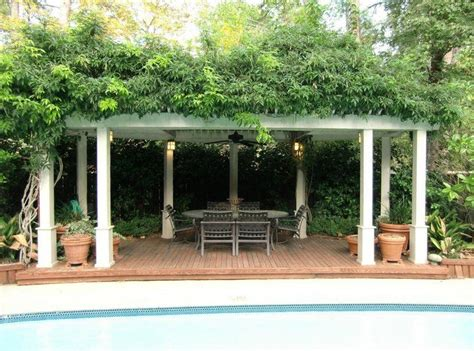 pergola with grape vine for shade pergola ideas pinterest