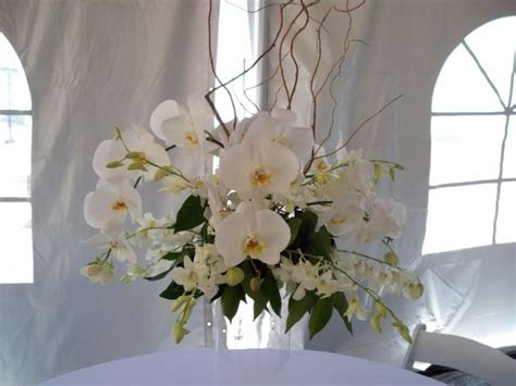 white orchid centerpieces white orchids centerpieces make a great presence weddingbee photo gallery