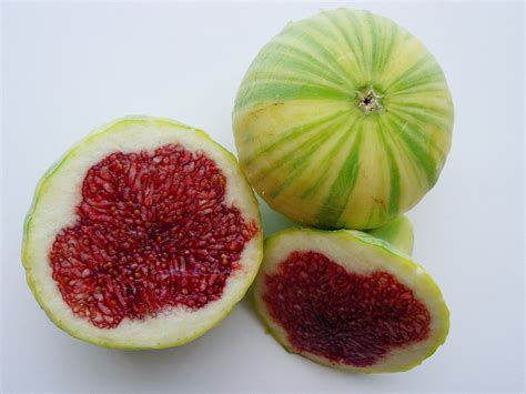 best fig with a fig a variety of fruits