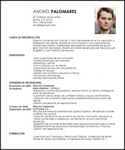 Modelo Curriculum Director Financiero Modelo Curriculum Vitae Director Comercial Livecareer