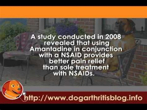 amantadine for dogs prescription painkillers for arthritis user guides part 3 amantadine