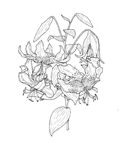 mazzi di fiori da colorare schede ed attivit 224 didattiche maestro fabio per la