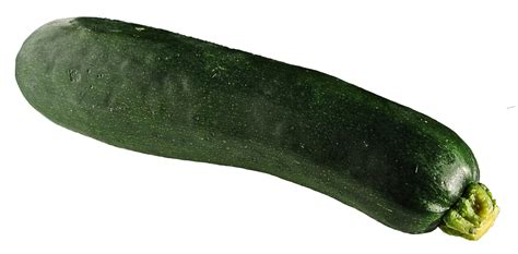 Is Zucchini A Root Vegetable - zucchini png image pngpix