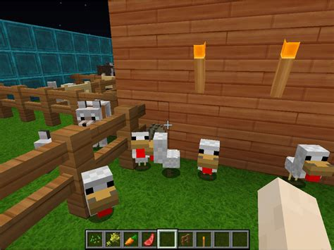 breed animals  minecraft  steps  pictures