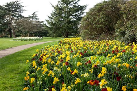 The Flower Garden Greenwich Park The Royal Parks Flowers In The Garden Of