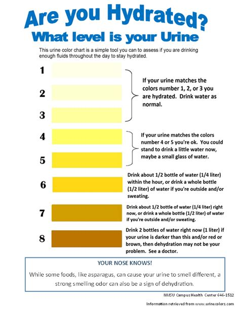 hydration chart hydration chart urine test pictures to pin on