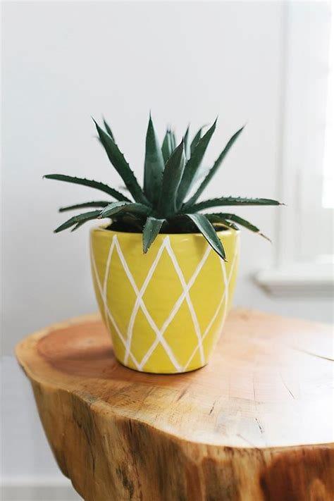 Pineapple Planters by Trend To Try Diy Pineapple Planters At Home In Love