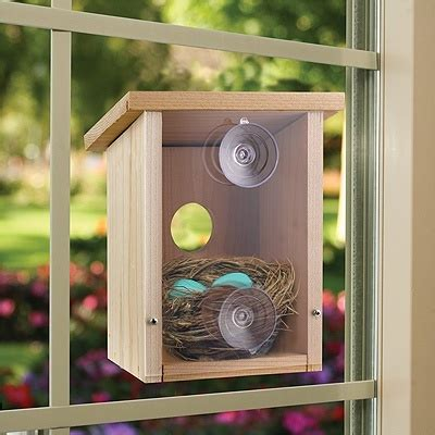 bird house attached to window build a birdhouse view 7 fun ideas for this spring