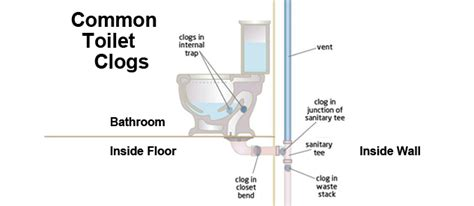 Plumbing Toilet Diagram by Toilets Toilet Installation Repairs Maryland