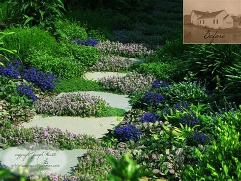 backyard ground cover ideas ground cover garden ideas pinterest
