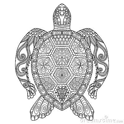 turtle mandala coloring pages drawing zentangle turtle for coloring page shirt design