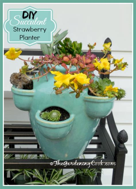 How To Make A Strawberry Planter Out Of A Pallet by Diy Succulent Strawberry Planter The Gardening Cook