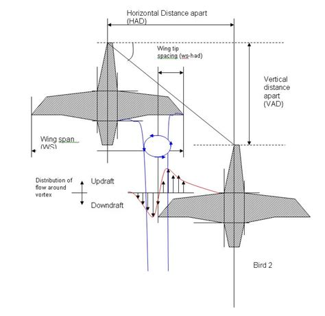 energy driven pattern formation energetics of flight energetics research group