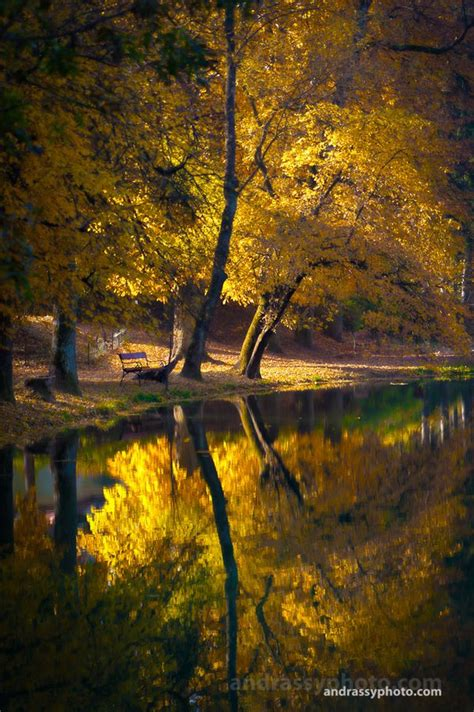 when rains fall the lost fields volume 1 books 22 best images about autumn photography inspiration on