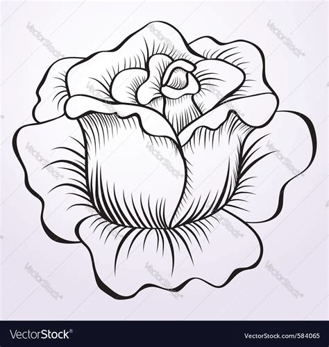 vector stock images drawing royalty free vector image vectorstock