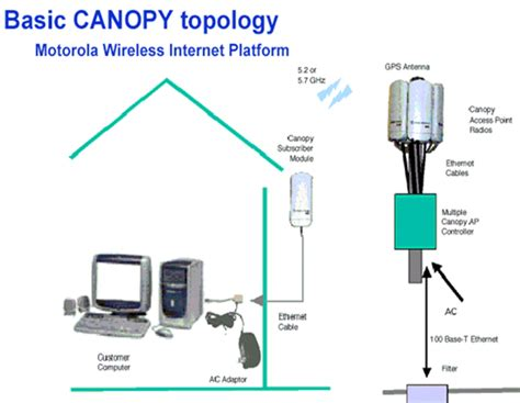 Canopy Software Header