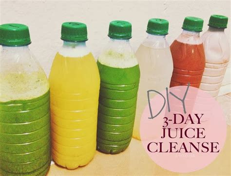 Carbon In Drinks Detox by Creatively Lu Thrifty Thursdays 3 Day Diy Juice Cleanse