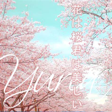 ikimonogakari sakura cover nurul shaumi yuria hana wa sakura kimi wa utsukushii 花は桜君は美しい