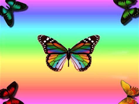 wallpaper animasi kupu kupu cantik deloiz wallpaper