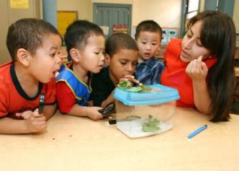 childcare workers occupational outlook handbook u s bureau of labor statistics