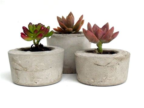 Small Concrete Planters by 106 Best Images About In House Plants On