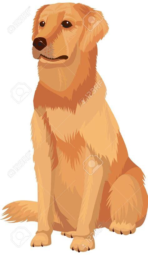 golden retriever clipart labrador retriever clipart pencil and in color