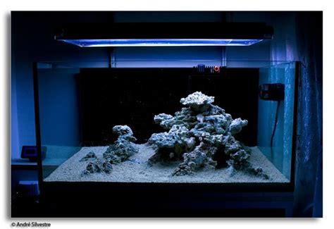 Marine Aquascaping Techniques by Tips And Tricks On Creating Amazing Aquascapes Reef2reef