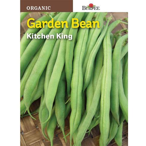 burpee organic bean bush kitchen king seed