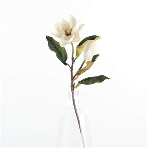 magnolia gaines magnolia bud and bloom stem magnolia chip joanna gaines