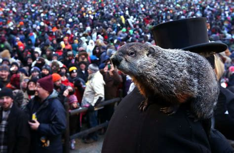 groundhog day the groundhog day in punxsutawney
