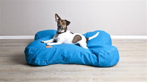 cucce per cani in plastica da interno dalani cucce per cani da interno accessori per la casa