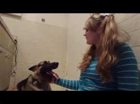 whitney goes down on dog wisconsin i don t like whitney wisconsin youtube