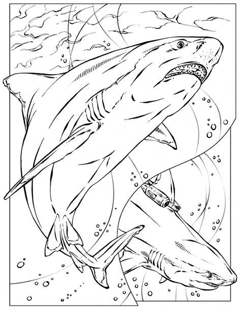basking shark coloring page animal jam shark coloring pages coloring pages
