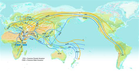 migration map tracing ancient migration through language nat geo education