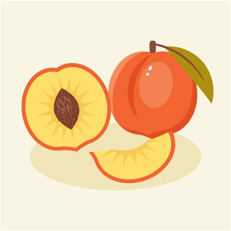 create  peach illustration  adobe illustrator