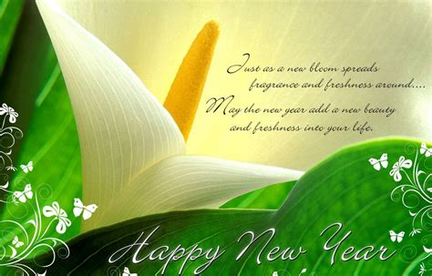happy new year sms greetings collection 2013 xcitefun net