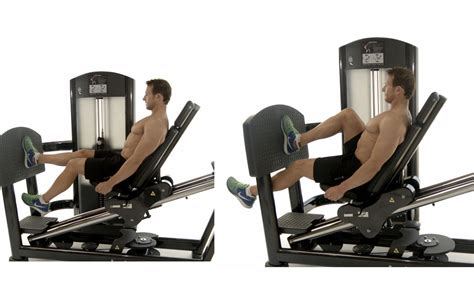 leg drive bench press 100 leg press bench healthstream sterling leg press u2013 gym u0026 fitness