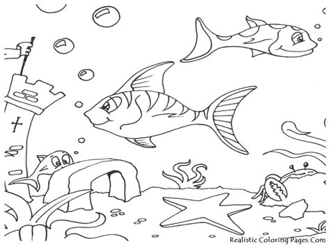 coloring pictures of animals in the sea cool the sea coloring sheets 38 761