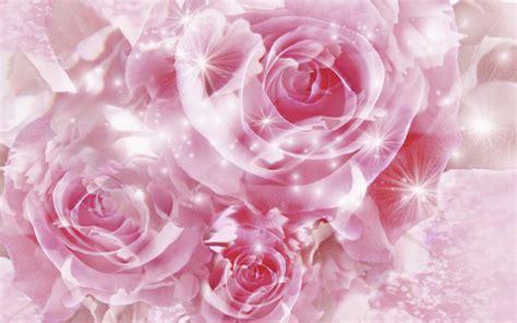 wallpaper iphone bunga wallpaper bunga rose animation